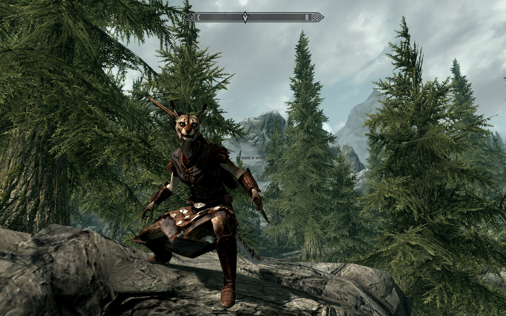 To those that use two-handed weapons in skyrim