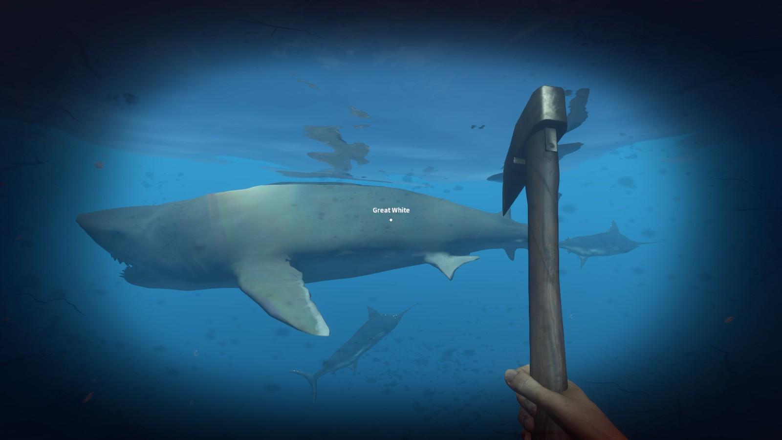 Weißer Hai -