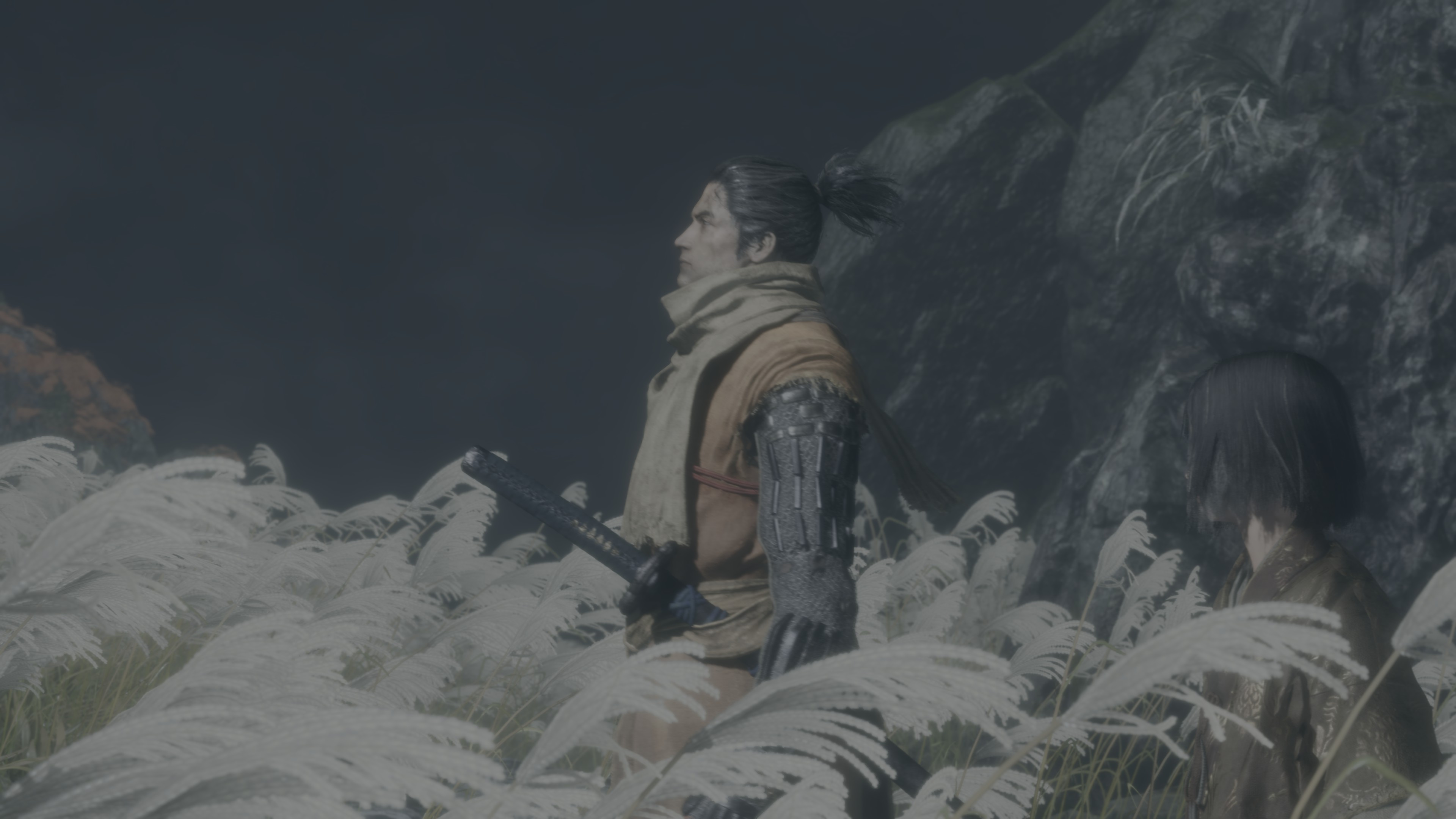 Sekiro: Shadows Die Twice [PC PS4 XONE] 37E678C20FC7BE93B118252C66BD0C1999F0646A