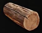 Mount & Blade II: Bannerlord odun
