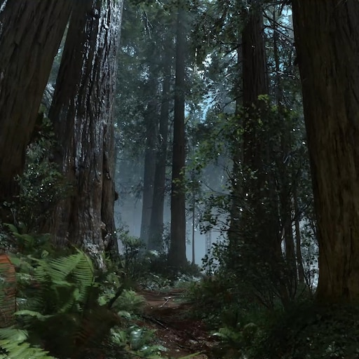 Steam Workshop Star Wars Battlefront Endor Forrest Rain Soothing Ultra Settings 1080p 60fps With Audio