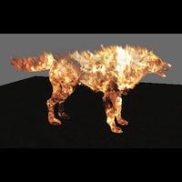 Fire Wolf画像