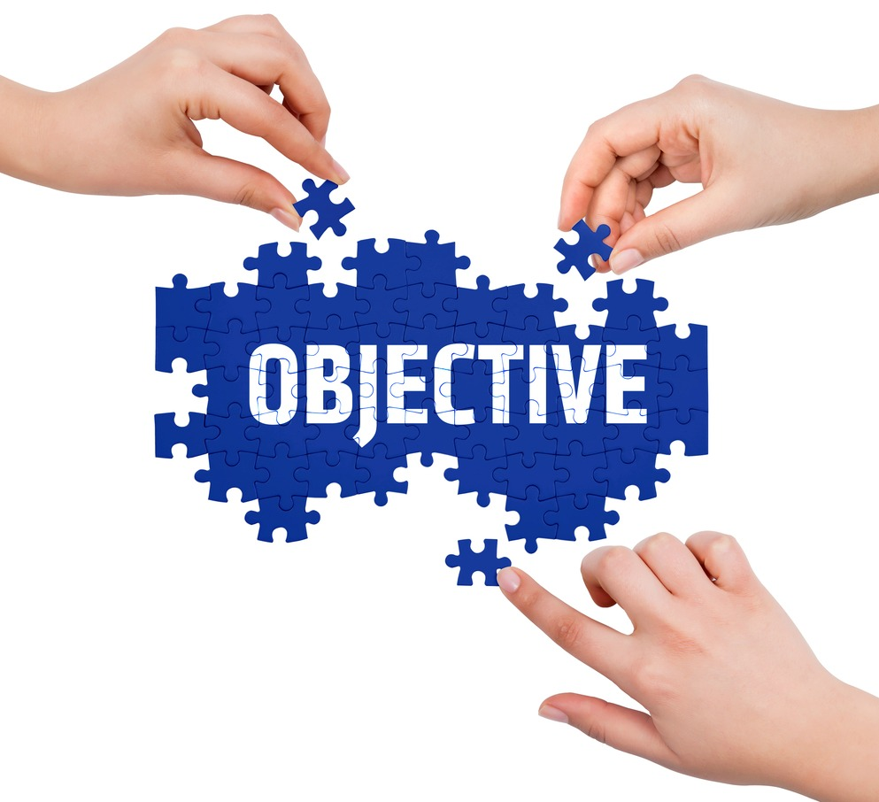 3 2 describe the purpose and objectives of the team in which they work The 3 basic leadership objectives and achieving an organizational purpose they align decisions and objectives are: 1 trust 2 productivity 3.