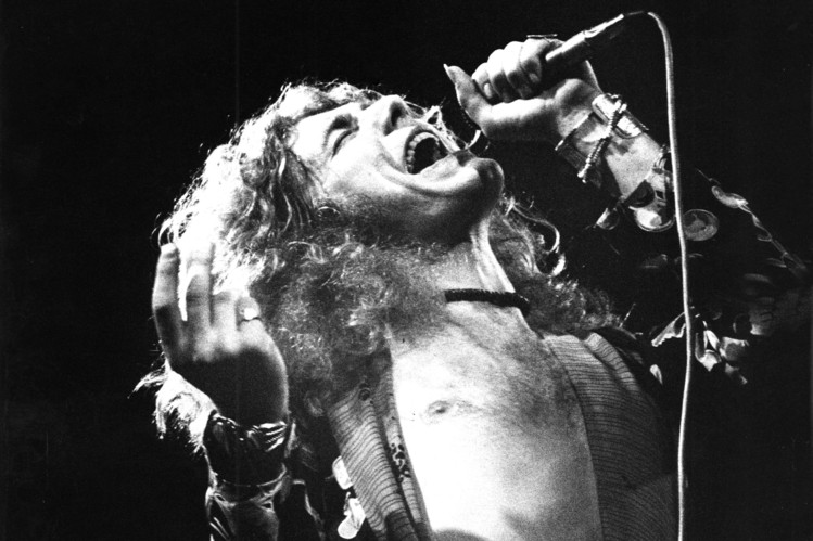 Steam 社区 Honestly Im Not But Robert Plant Is