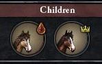 Foal Portraits