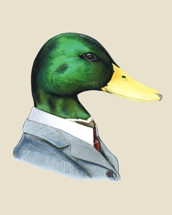 Download & Steam Community :: :: The real slim duck