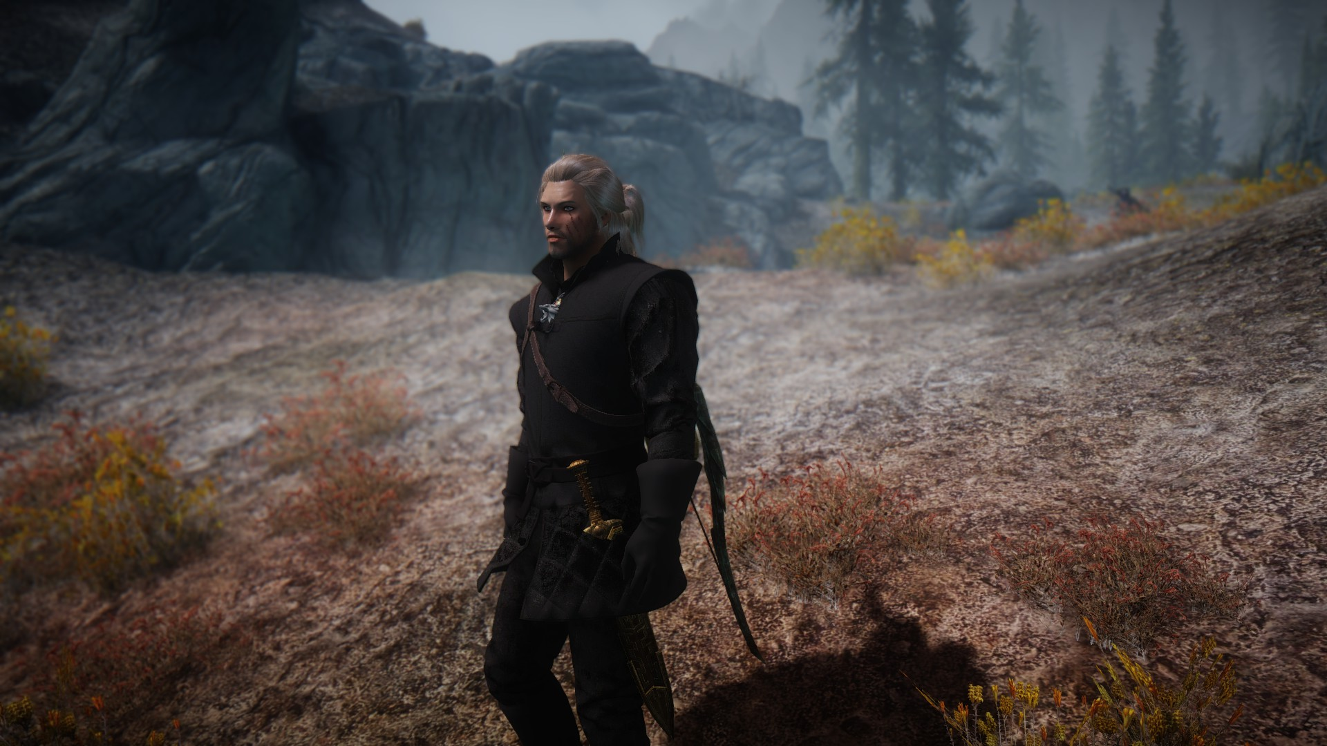 Steam Workshop :: The Witcher 3 New Moon Set