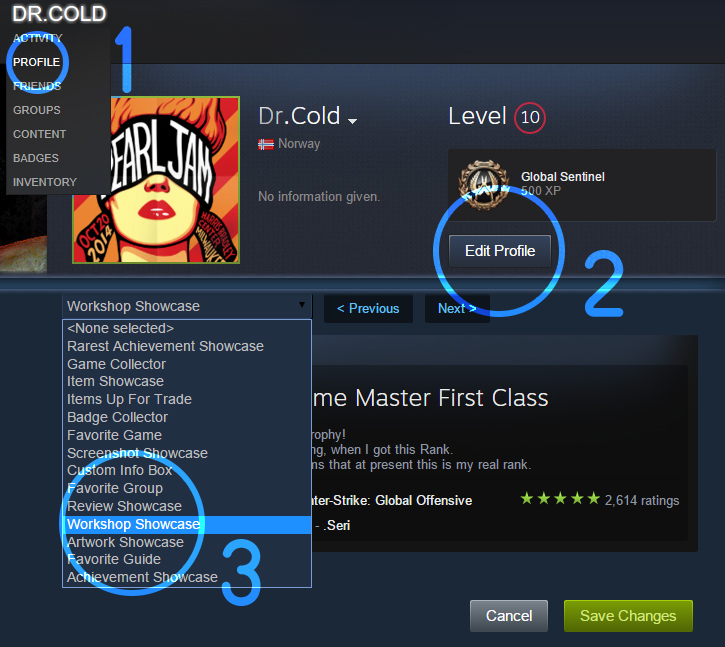 Steam Community :: Guide :: How put CS:GO rank in steam profile