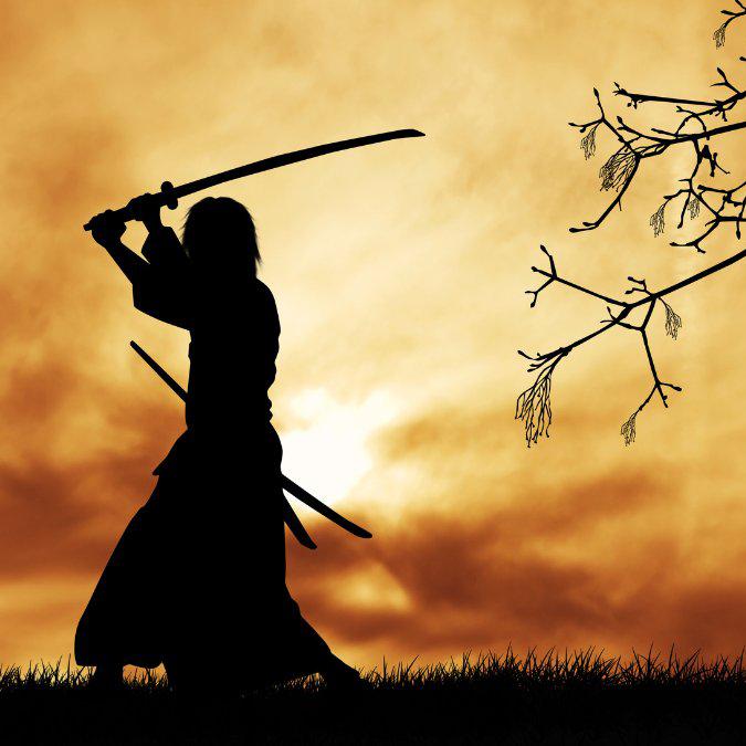 seven samurai reddit download
