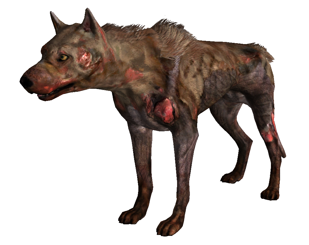 How To Get The Red Dog S Head On Resident Evil