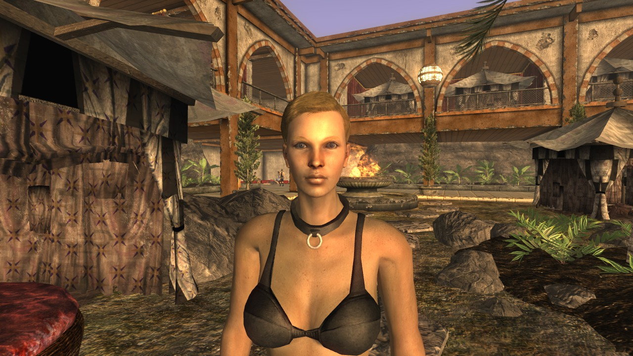 Opinion, the Fallout new vegas naked girl having sex apologise