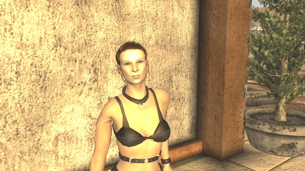 That Fallout new vegas naked girl having sex situation familiar