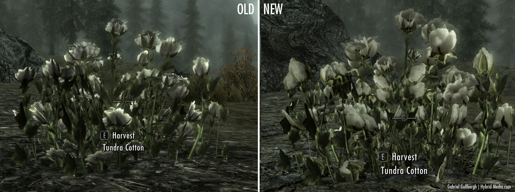 Steam Workshop :: HD Plants + Herbs