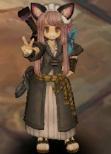 Steam Community Guide Tree Of Savior Achievement Pink - Hairstyle color tree of savior