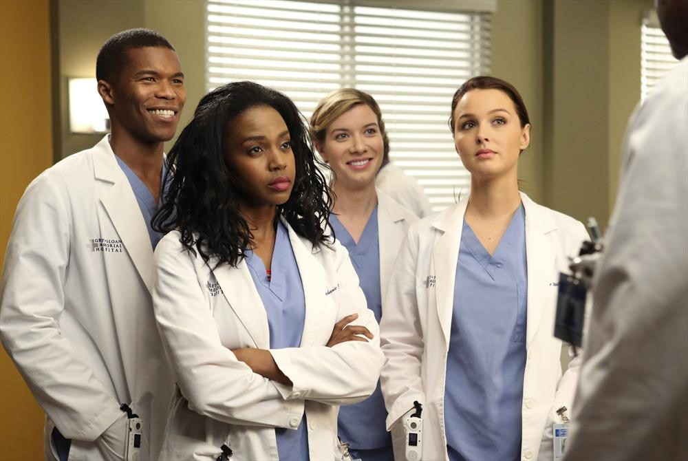 Comunidad Steam S11e20 Watch Greys Anatomy Season 11