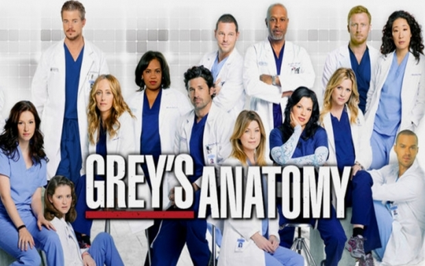 Comunità di Steam :: :: [ABC] watch Grey\'s Anatomy Season 11 Episode ...