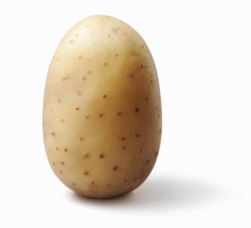 Steam Community :: Guide :: How to seduce a potato