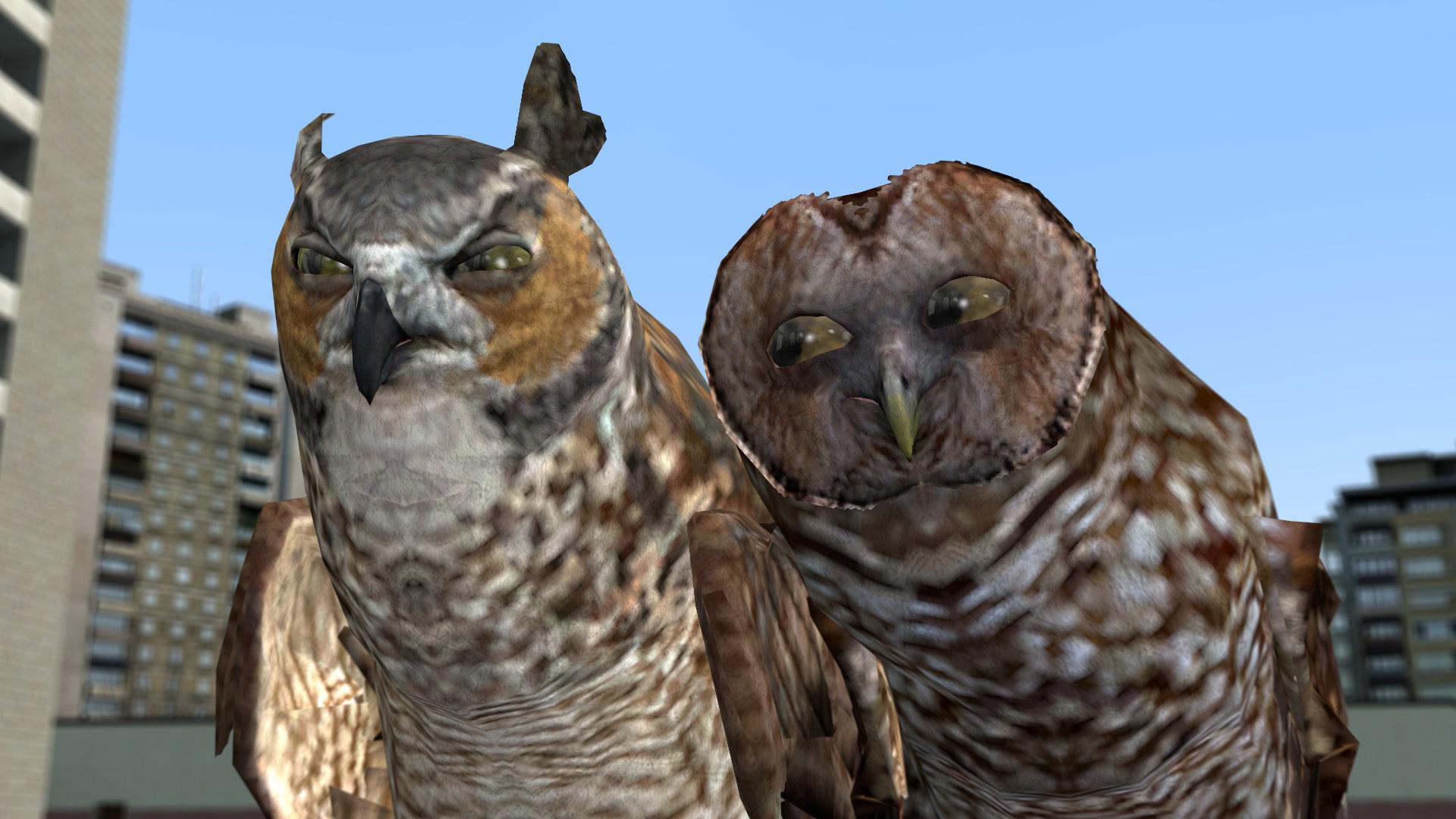 Steam workshop animated owls voltagebd Images