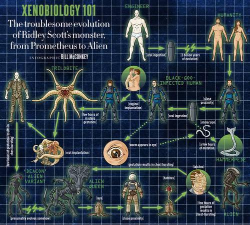 Komunita služby Steam :: :: How Xenomorph Becomes Xenomorph