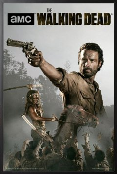 walking dead 6 stream