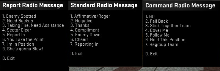 Steam Community :: Guide :: How to use the hidden radio
