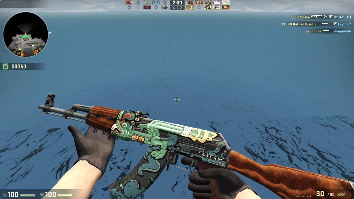 steam community screenshot stattrak ak 47 fire serpent name