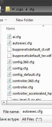 Steam Community :: Guide :: CS:GO Basic Autoexec