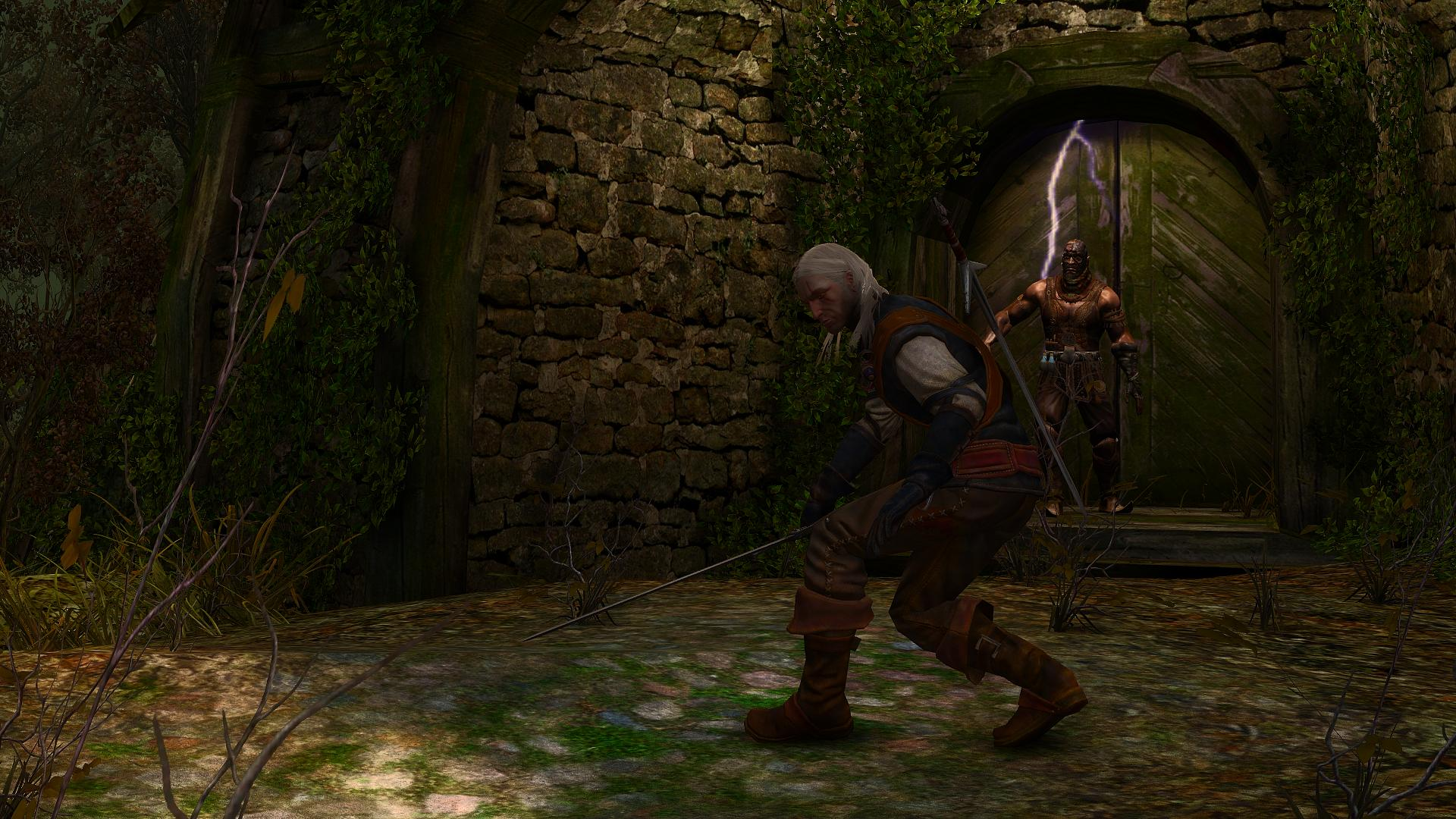 The witcher enhanced edition performance mod