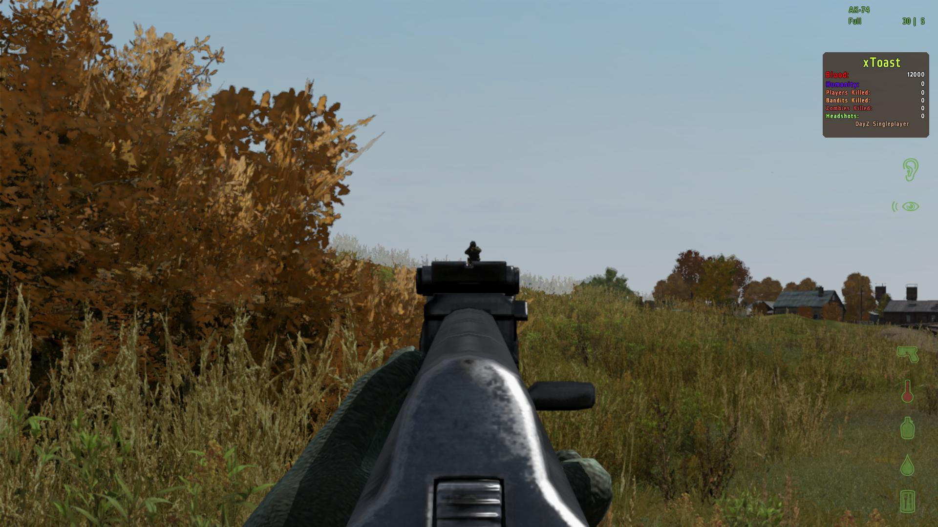 does dayz have single player