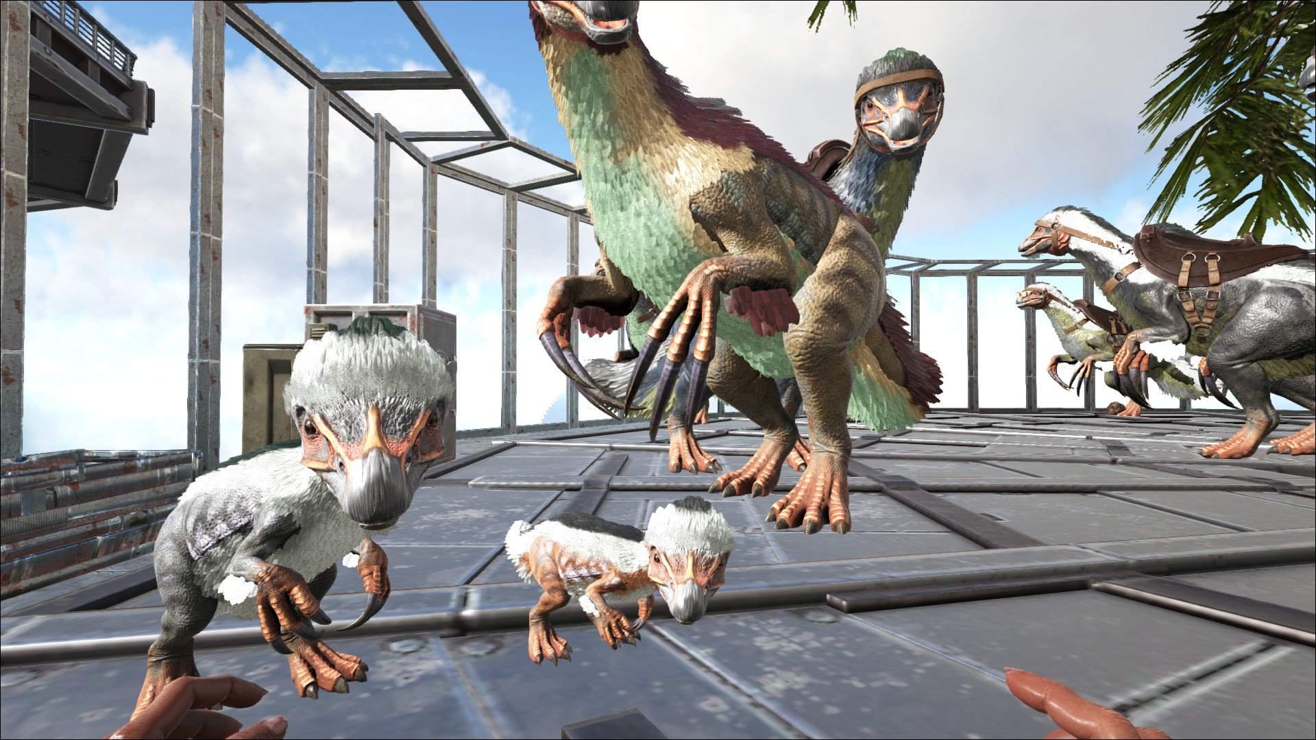 Ark:  Survival Evolved 5B2CF3E1899874E37F3AEF766CA7A5C2827698B0