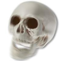 Rattling Skeletons画像