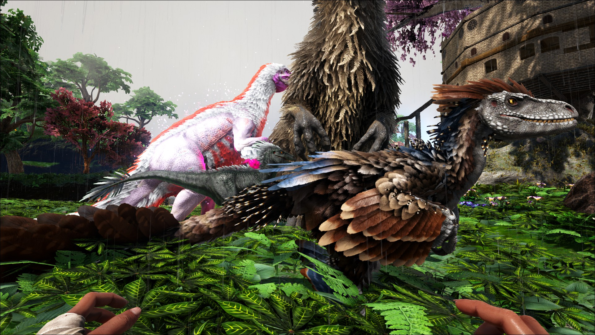 Ark:  Survival Evolved - Page 2 2B5BF294179AE250CE1D00722BD1D9D987747B07