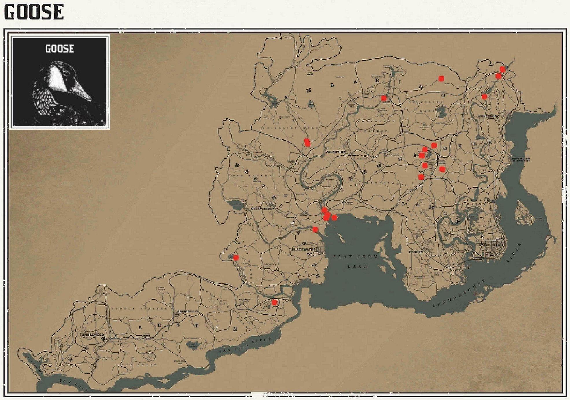 Карты для поиска животных в Red Dead Redemption 2