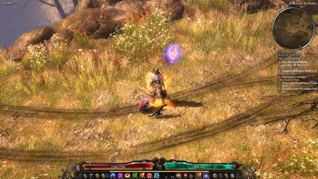 Steam Community :: Screenshot :: Max 3 cosmetic pets can be