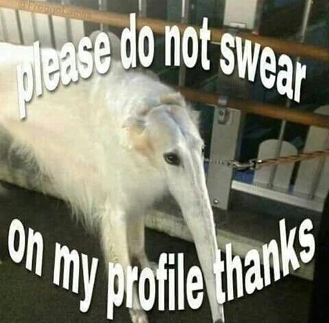 Steam Community :: :: please do not swear on my profile thanks