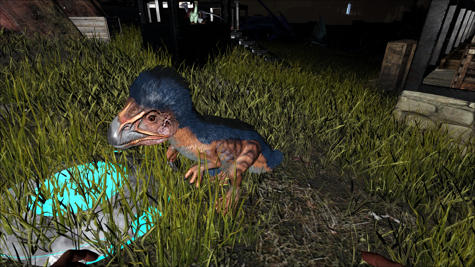 Ark:  Survival Evolved A69A42734E2BC5CF33C51AA4E6524F2D098138C5