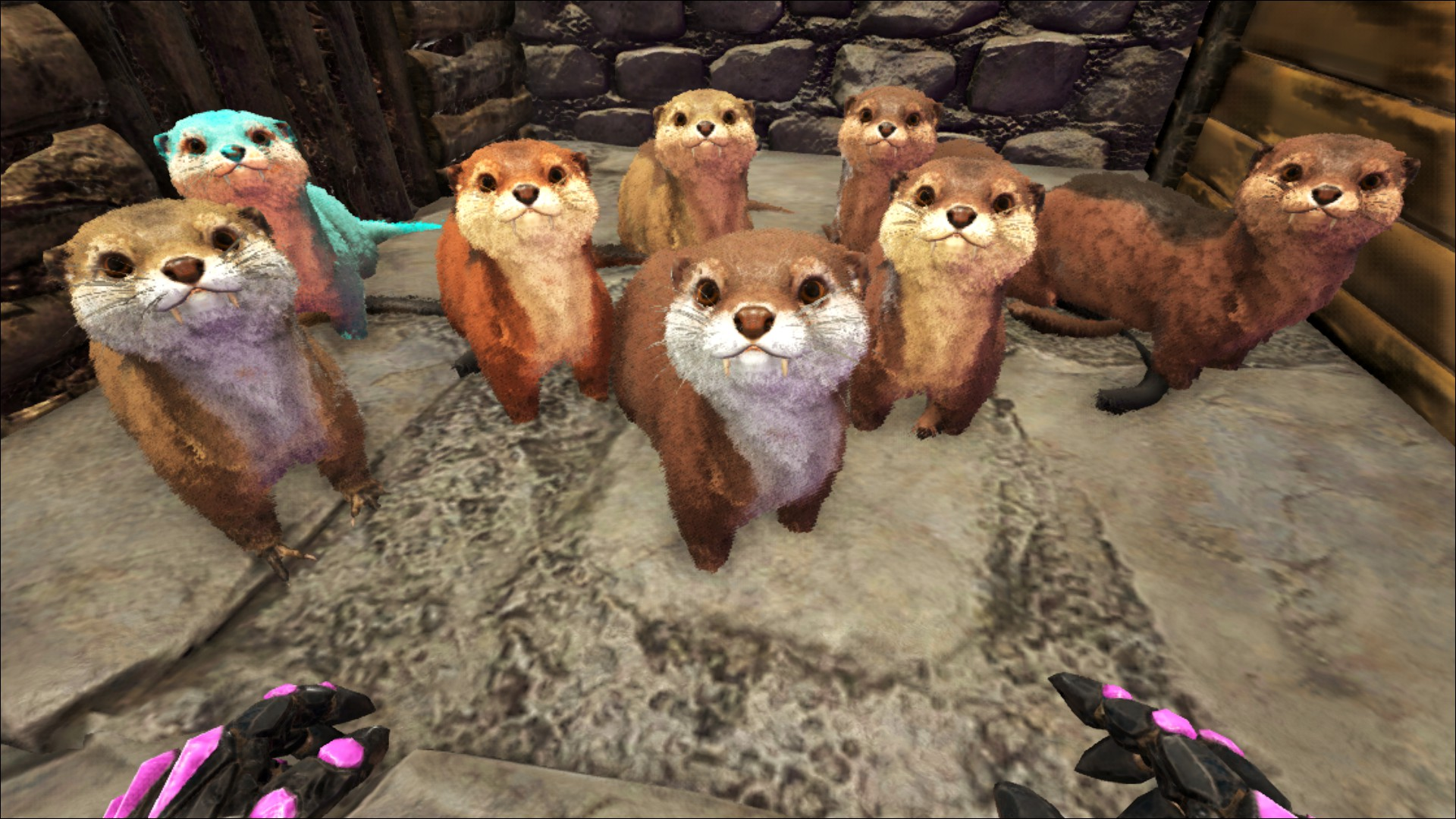 Problem With Otter Playark How to get black pearls in ark: problem with otter playark