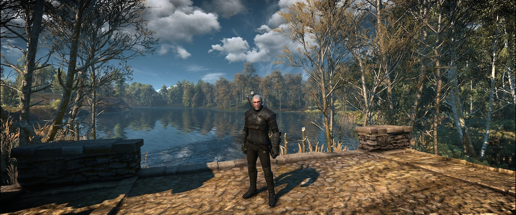 Steam Community :: Screenshot :: The Witcher 3 + Mods = SEXY AF