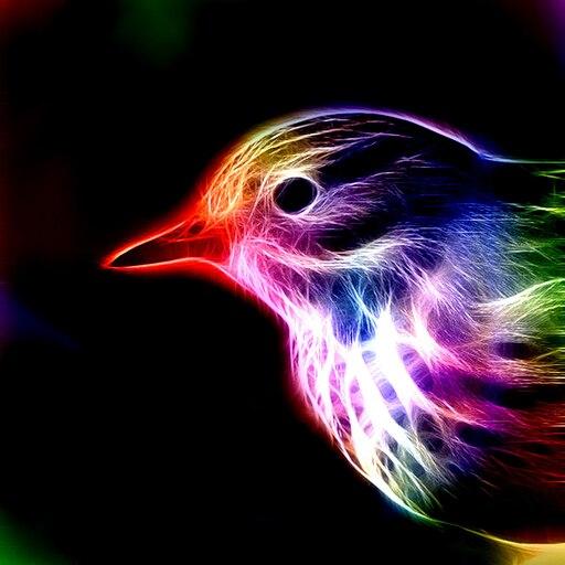 пасечнику птицы на аву красивые универсальна, требует точной