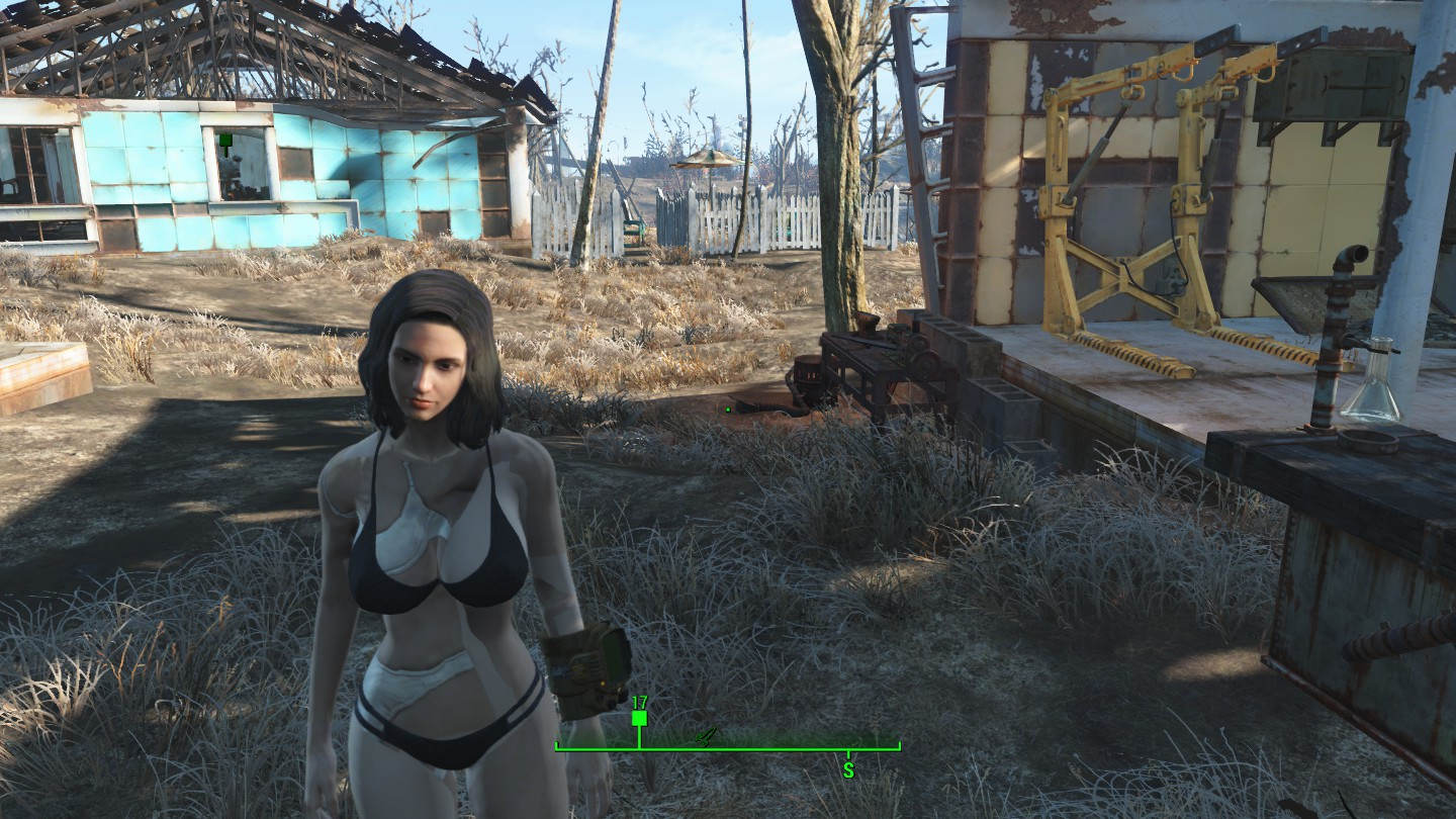 Need help with Cbbe Mod problem :: Fallout 4 General Discussions