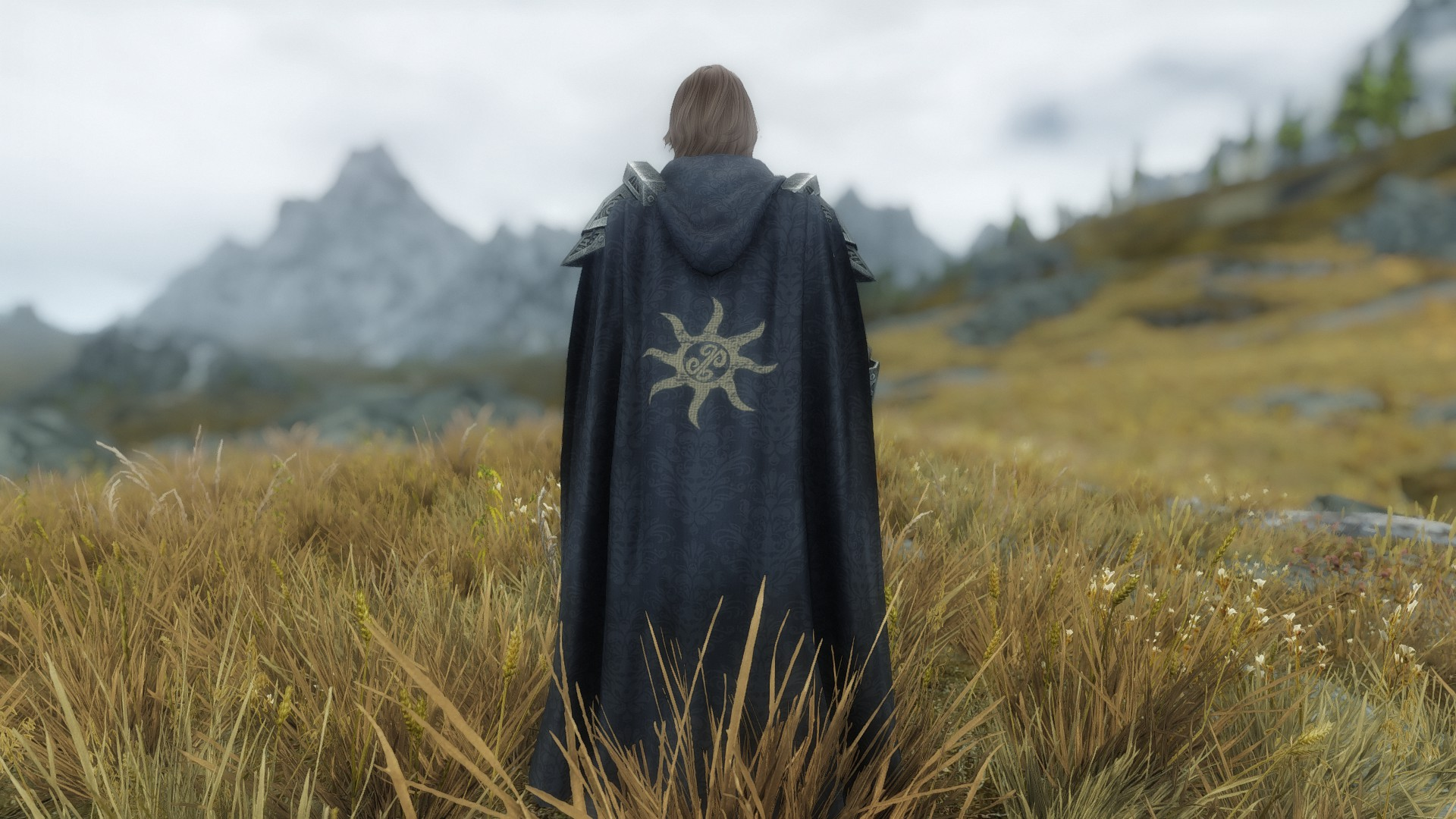 Steam Community Guide Best Immersion Mods For Skyrim