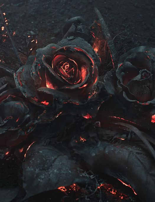 Steam Community Fleur Rouge De Lave