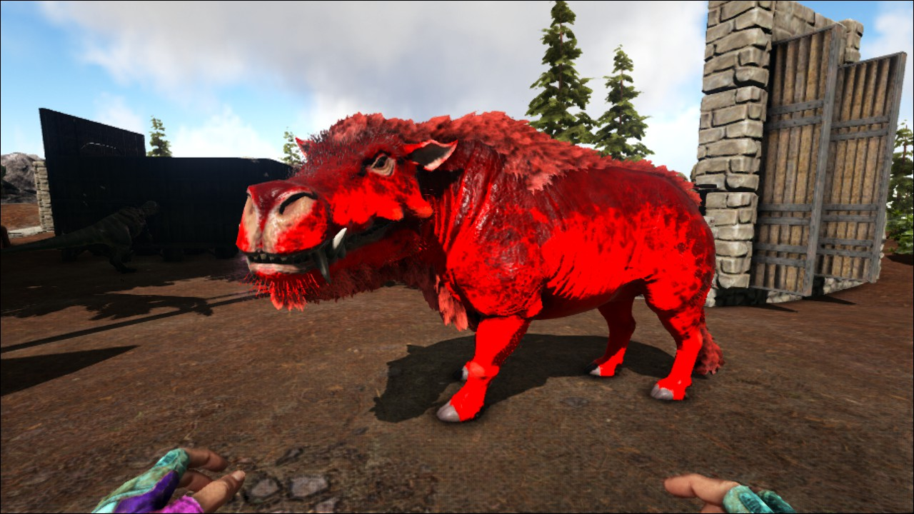 Steam Community Screenshot Hell Pig Another Mutated Daeodon Survival evolved, the daeodon eats superior kibble, raw mutton, cooked lamb chop, raw. hell pig another mutated daeodon