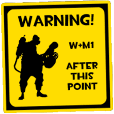 Image result for W+m1