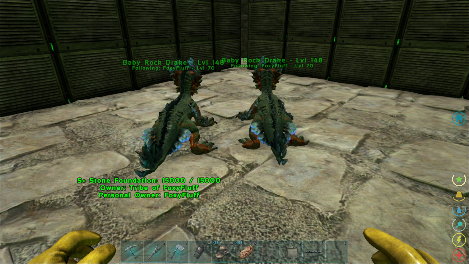 2 Rock Drakes from 1 egg, Jackpot? - General - ARK - Official