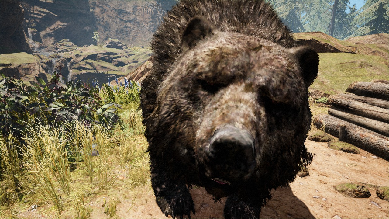 Steam Community Guide Tamable Animals In Far Cry Primal