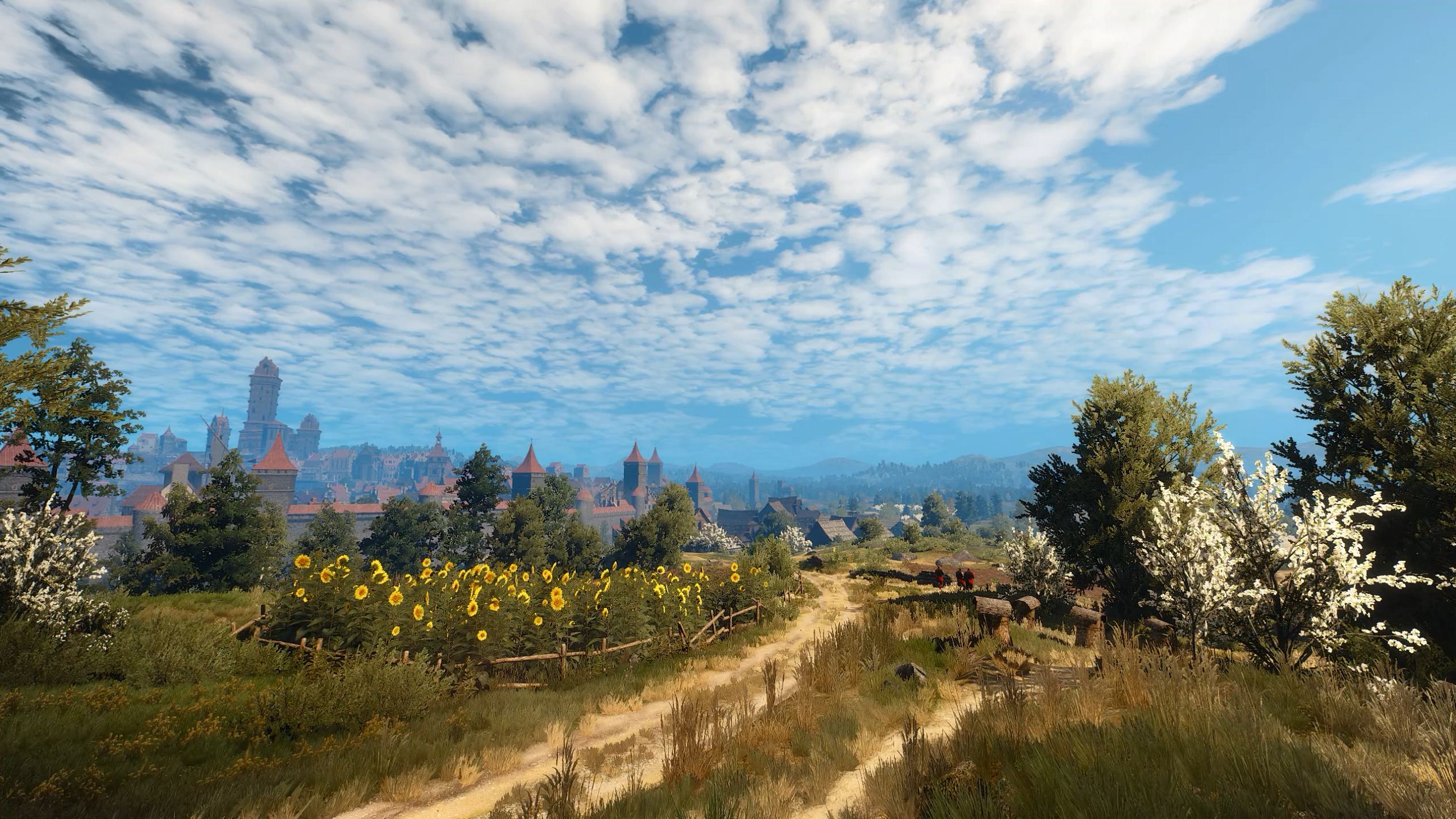 Steam Workshop The Witcher 3 Fields Of Novigrad 1440p