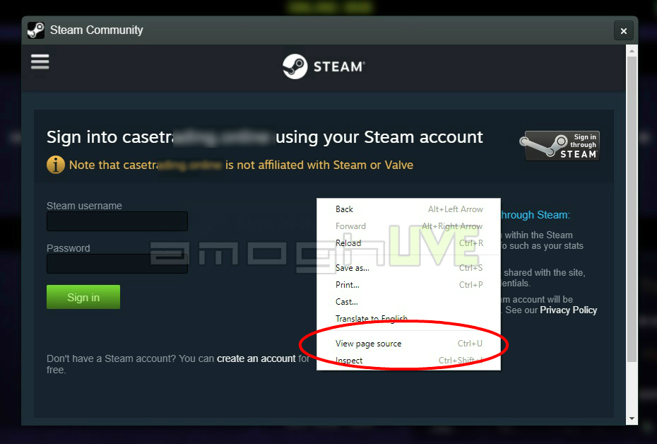 page phishing steam