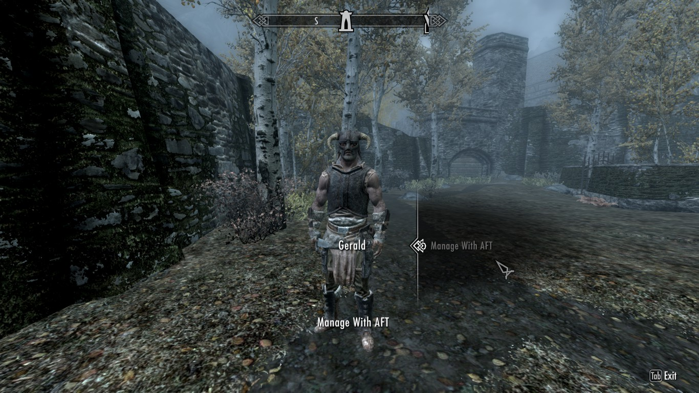 Steam Community :: Guide :: SKYRIM - YOUR CLONE AS YOUR FOLLOWER