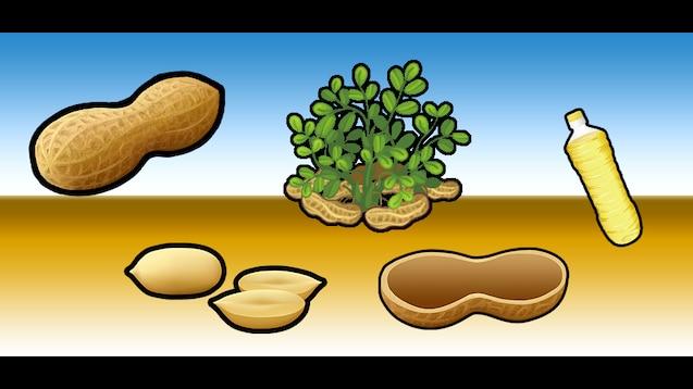 Steam Workshop :: Peanuts (And Peanut Accessories)